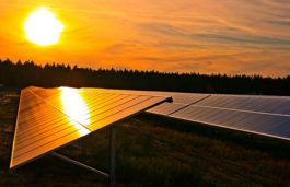 NTPC Tenders for 500 MW Solar Projects in Maharashtra