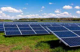 SECI's 70 MW Amguri Solar Park Tender to Close on May 22