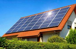 Solar Power Saves Government's Money and Key to Environment Protection: C P Singh