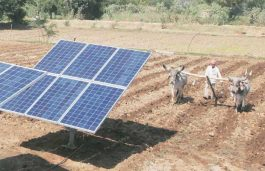 Govt Plans to Supply Solar Power to 40L Farmers in 10 Years