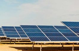 PROINSO, Joules Power to Build First Utility-Scale Solar Project in Bangladesh