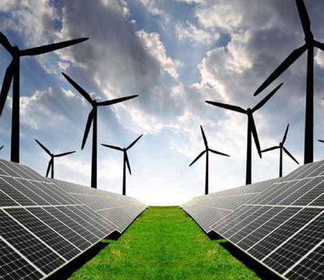 Private Companies Investing in India's Renewable Sector