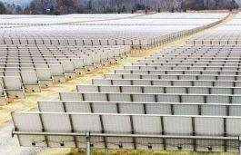 BACKSHEETS Selecting the Right Materials for Solar Modules & EVA