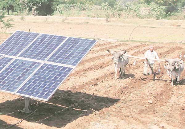 Gujarat Solar Farm