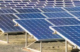 ACME Group Won 50 MW Solar Power Project in SECI Reverse Auction