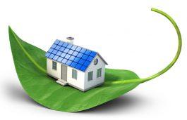 Delhi's 7 Govt Colonies to be More Greener; Mulls to Go Solar