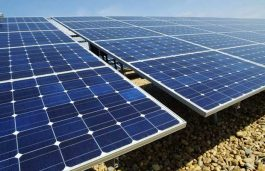 Waaree Bags $105 Mn Order in California for Supply Solar Modules
