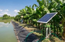 ADB to Provide $45.4 Mn to Spur Off-Grid SPV Pumping for Irrigation in Bangladesh