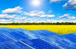 MNRE to Explore Possibility of China Joining Int'l Solar Alliance