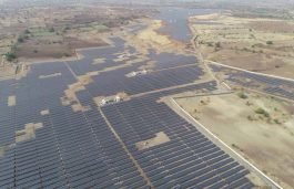 LONGi Solar Backs Lightsource BP for 60MW Solar PV Project in India