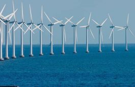 MNRE Discusses India's First Offshore Wind Power Project with Developers