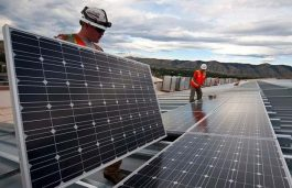 Shapoorji Pallonji Collects Solar Imports without Paying Safeguard Duty
