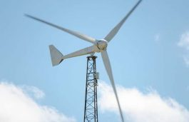 IL&FS Energy arm Puts Stake in 2 Wind Energy Assets on Sale