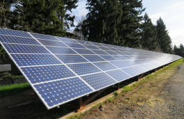 Government Regulates Time for Solar Tenders