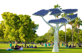 Solar Tree to Charge Phones and Avail Free Wi-Fi in Coimbatore's VOC Park