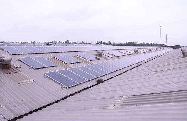 Solar Energy Runs Century Plyboard Units