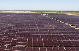 IL&FS Violates Metering Norms at Solar Plants of SoftBank Energy and ACME Solar