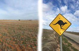 innogy to Kick Off Australia's Largest Solar Power Plant Construction