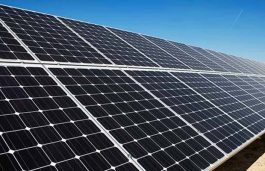 Shapoorji Pallonji Examines Solar Development Possibility in Uzbekistan
