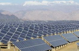 JSW Energy puts solar power plans on backburner over policy