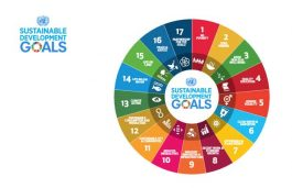 Cabinet Clears National Monitoring Framework on SDGs