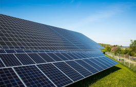 Policy and Technology Helped Drive Solar Module Cost Down: Study