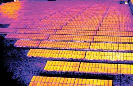 JinkoSolar Supplies 95 MW Panels for Australian Solar Project