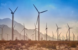 Seimens Gamesa & Senvion Interested in Building $1 BN Wind Farm in Egypt