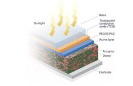 Organic Solar Cells have a Role to Play in Renewable Energy