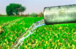 Farmers Granted Option to Pick Solar-Powered Tube-Wells