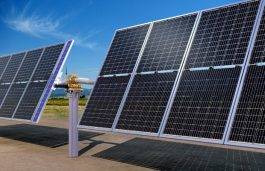 "LONGi to Supply 224 MW Modules For Largest ""Bifacial+Tracker"" Project in US"