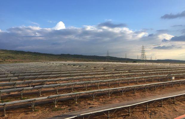 Reva Solar Plant by Sprng
