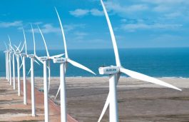 Maharashtra Discom Warned Over Late Payment to Wind Developers
