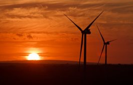 Vestas Secures Orders Worth 687 MW From PacifiCorp