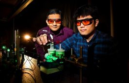 Artificial Photosynthesis Can Bring Green Tech Closer to Solar Energy Storage