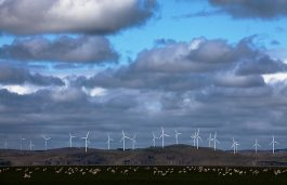 Enel Begins Work on 280 MW Wind Facility in South Africa