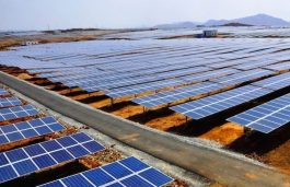 NTPC Issues Tender For Civil Works For 24 MW Solar Plant in Solapur