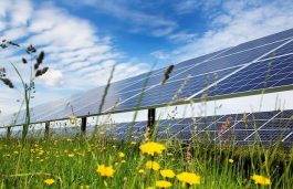 GAIL Tenders for 1.8 MW Solar Projects in Madhya Pradesh