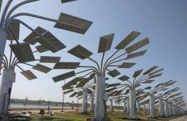 CPWD To Install 'Solar Trees' in Central Govt Residential Complexes