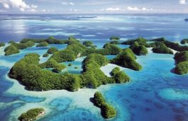 Palau Becomes 76th Nation to Join the International Solar Alliance