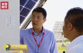 "Solis inverter debuted on the news feature of ""Good crops on photovoltaic power stations"" by CCTV in its ""Half-Hour Economy"""