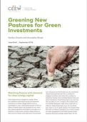 CEEW Report on Greening New Pastures for Green Investments