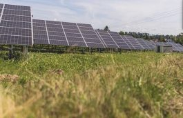 Germany's Biggest Solar Park at 180 MW Approved by EnBW
