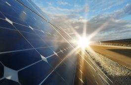 Masdar Wins With 100 MW Bid for 1st PPP Solar Project in Uzbekistan