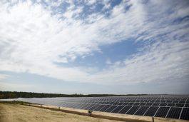 NextEra Energy Commissions Shaw Creek Solar Plant in South Carolina
