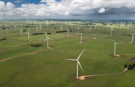Vestas Secures Full Wind Volume in Danish Auction Round