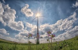 Over 60 GW of Wind Energy Capacity Installed in 2019: GWEC