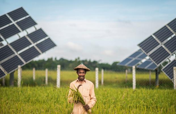 IFC_Bangladesh_Solar