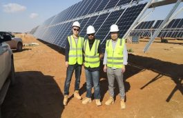 Jolywood to Supply Solar Panels for Largest Bifacial Plant in Middle East