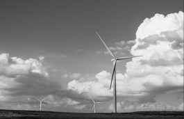 Too Early to Assess Impact of COVID-19 on European Wind Sector – WindEurope